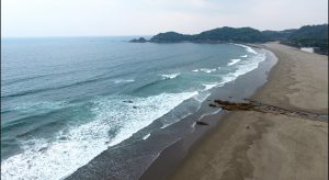 1月四国の海水は冷たいのか?真冬にサーフィンしに行ってみた。