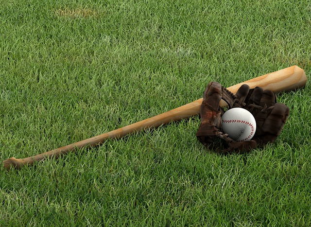 独立リーグってプロ野球とどこが違うの?設立のきっかけやチームについて解説